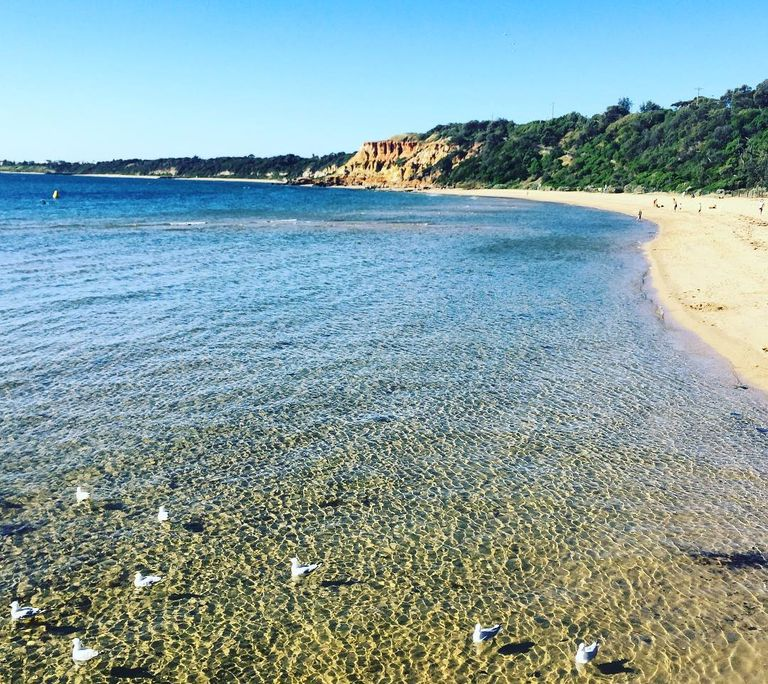 Melbourne's Best 5 Beaches (+ Some Regional Favourites)